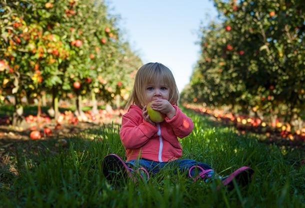 Barn og ernæring - jente spiser frukt